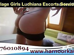 09876010894 call girls service in ludhiana call girl services in ludhiana